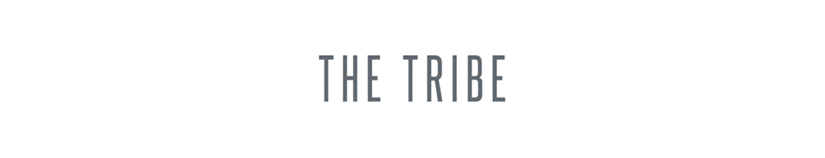 The Tribe Download