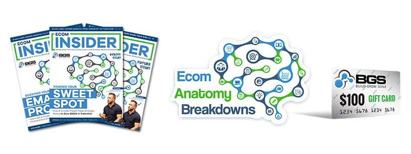 Ecom Insider Free Download