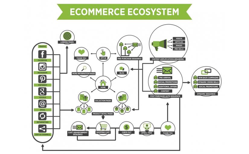 Ecommerce Marketing Master Free Download