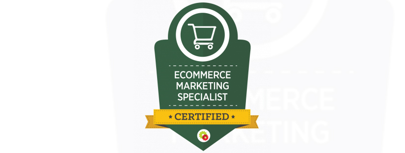 Ezra Firestone - Ecommerce Marketing Master