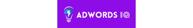 Download AdWords IQ Academy