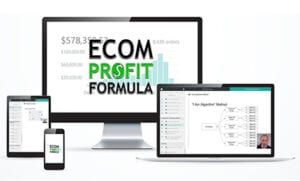 Ecom Profit Formula